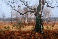 Eugen Kunkel, Alte Birke, Acryl/Holz, 30x45 cm, 2016