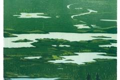 Franziska Neubert, Holzschnitt, verlohrene Form, Hexenwald - Seen