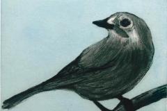 Franziska Neubert, Radierung, Vogel