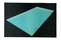 Franziska Neubert, Nachtpool 3, Farbholzschnitt, 100x140 cm, 1400 EUR