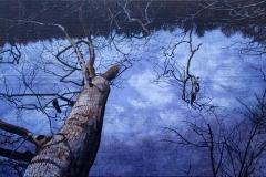 Eugen Kunkel, Der gespiegelte Himmel, Acryl auf Holz, 30x45 cm